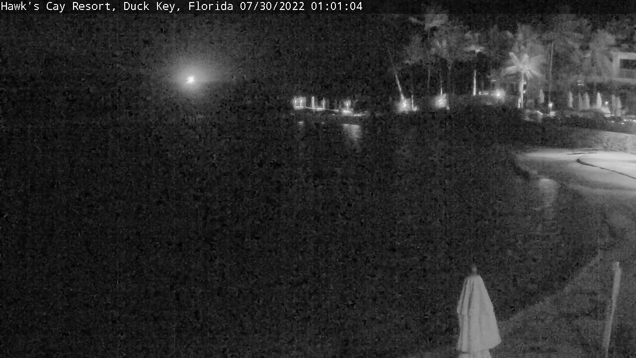 Live Cam Hawks Cay Resort, Duck Key, Florida - United States