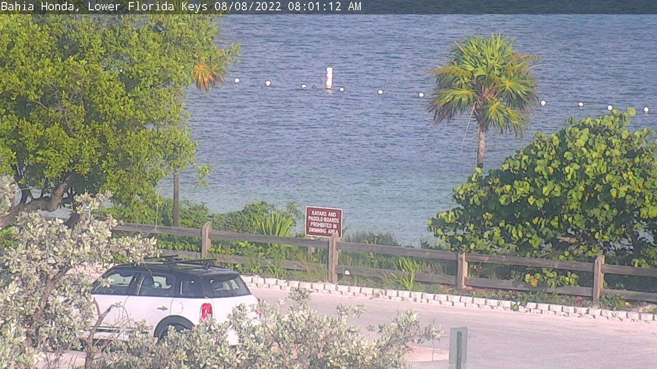 Live from Big Pine Key & the Lower Keys