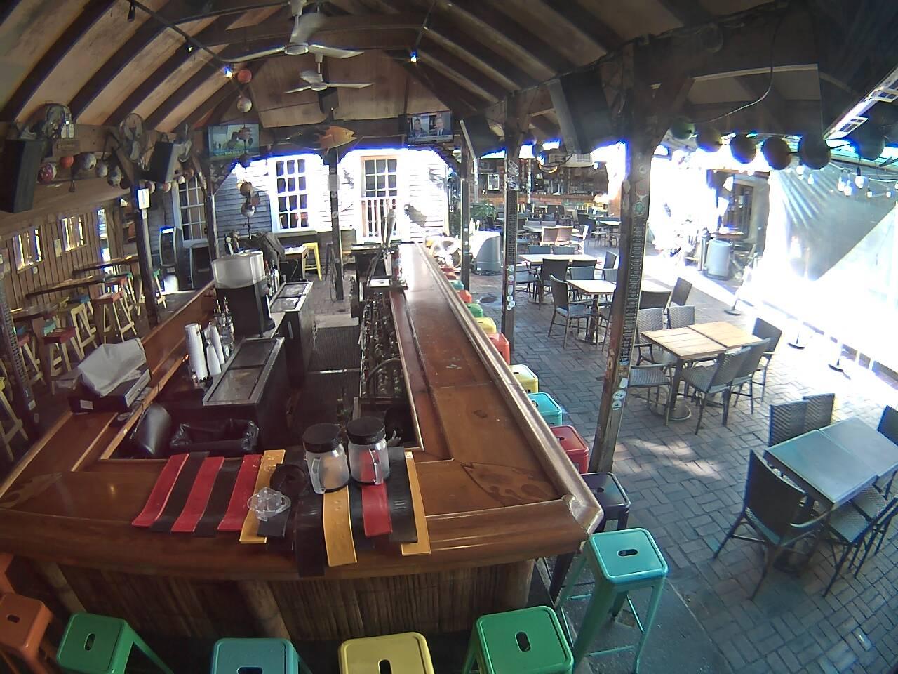 Smokin' Tuna Saloon: Bar Cam